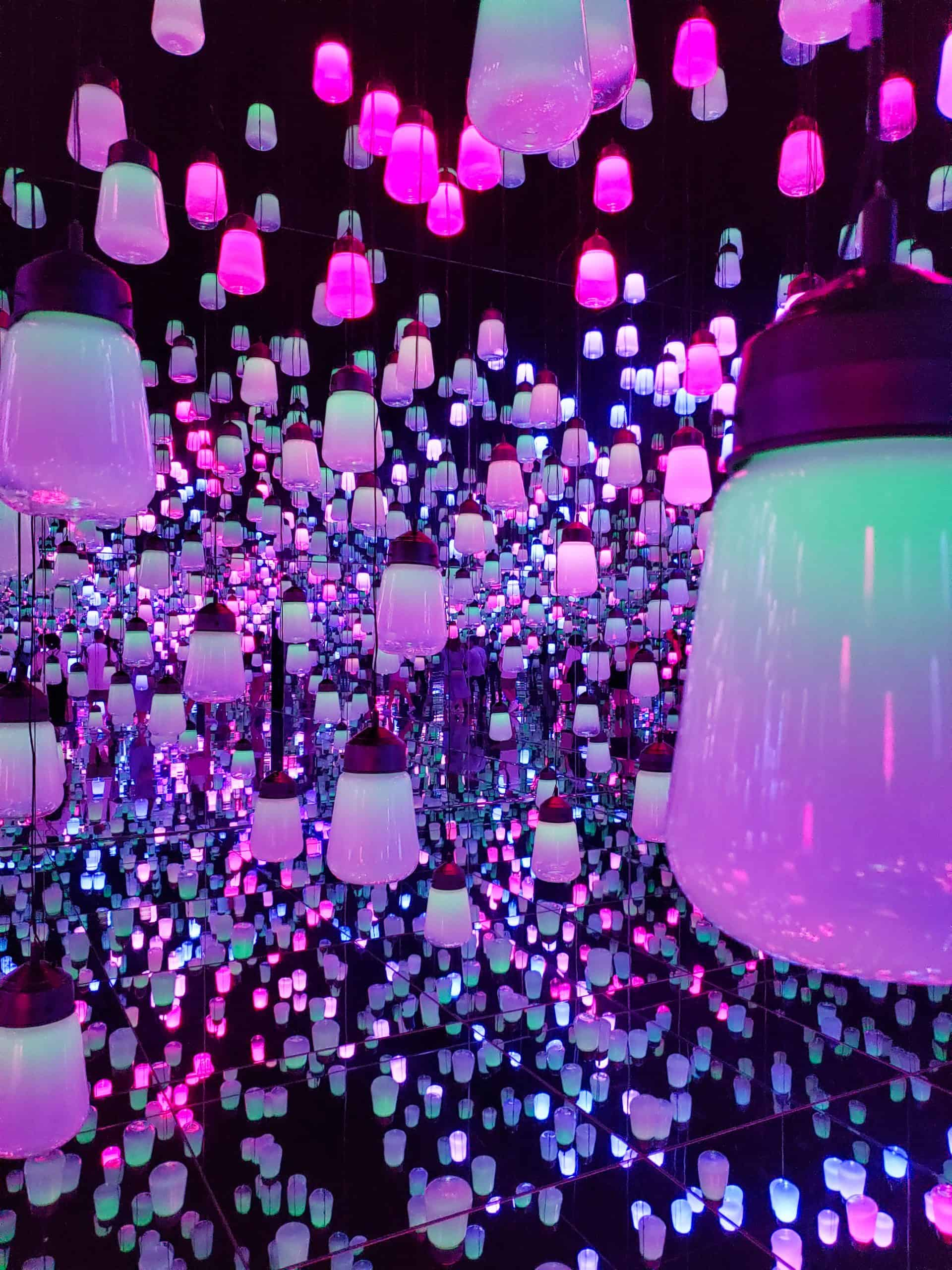 Visiting teamLab Borderless: What to Expect